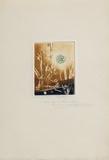 Composition E Impressão colecionável por Renée Lubarow