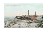 Washoe Smelter, Anaconda Print
