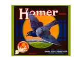 Homer Pigeon Label Posters