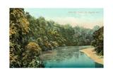 Wild Cat Creek, Lafayette Poster