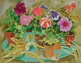 Les pots de fleurs II Collectable Print by Louis Vuillermoz
