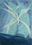 Fleur Céleste Limited Edition by Cesare Peverelli