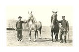 Handlers with Sturdy Horses Posters