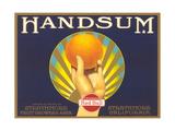 Handsum Orange Label Art