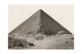 Cheops Pyramid and Camels Poster