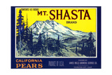 Mt. Shasta Pear Label Posters