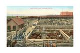 Union Stockyards, Portland Art