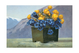 Yellow Ranunculus and Bluebells Prints