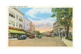 Main Street, Sanford Posters