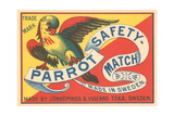 Match Box with Parrot Prints