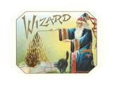 Wizard Conjuring Tobacco Leaves Poster