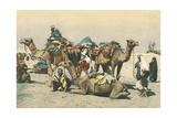 Camel Caravan Prints