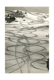 Ski Trails in Snow Stampa giclée premium