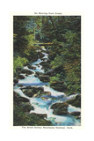 Roaring Fork Creek, The Great Smoky Mountains National Park Prints