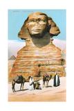 Sphinx, Camels Bedouin Posters