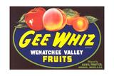 Gee Whiz Label Art