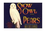 Snow Owl Pear Label Prints