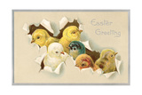 Easter Greeting, Chicks Prints