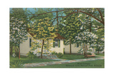 Mammoth Cave Hotel Cottages Prints