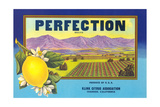 Perfectin Lemon Label Posters