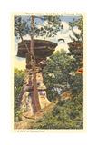 Jumping Stand Rock, Wisconsin Dells Kunstdruck