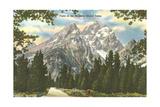 Vista of Majestic Grant Teton Posters