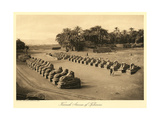 Avenue of Sphinxes, Karnak Prints