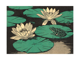 Frog on Lily Pad Prints