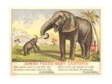 Jumbo Feeds Baby Castoria Art