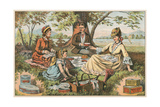 Old Fashioned Picnic Posters