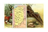 Vintage Map, Agriculture, Mining Prints