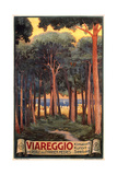Travel Poster for Viareggio Posters