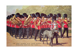 Irish Guards with Mascot Posters
