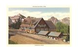 Paradise Inn, Rainier National Park Poster