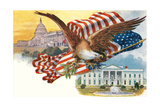 Capitol, White House, Eagle 高画質プリント