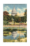 Reflection of Capitol Dome, Botanical Gardens Prints