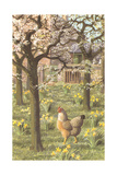 Chickens in the Spring Posters