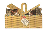 Kittens and Dogs in a Basket Prints
