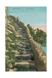 Old Path, Capri Print