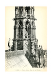 Roof of Notre Dame Cathedral Prints
