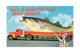 Giant Fish on Flat Bed Truck Prints