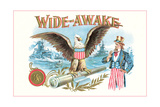 Wide-Awake, Eagle, Uncle Sam Posters