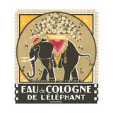 Elephant Cologne Print