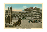 Rome, Italy, Circus Maximus Spectacle Posters
