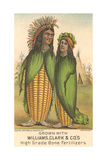Indians as Ears of Corn Posters