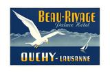 Beau-Rivage Palace Hotel, Seagull Prints