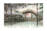 Hump-Backed Bridge, Kameido Tenjin Posters