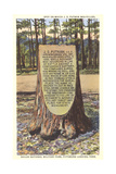 Civil War Monument, Shiloh Art