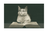 Wise Cat Reading Book Prints