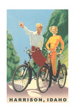 Cycling in Harrison Prints